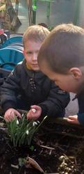 Observation des premières fleurs